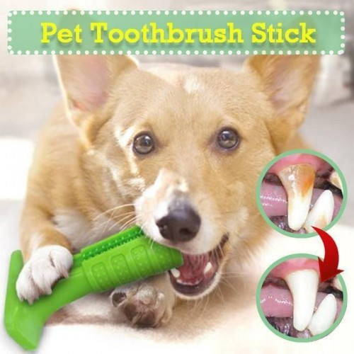 Pet toothbrush, soft silicone pet home cleaning Pet Toothbrush SMALL