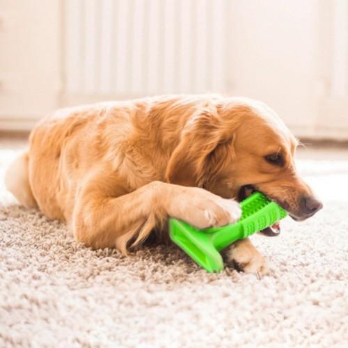 2018 Dog Toothbrushbrush for Dogs Hygiene Toy Brushing Stic