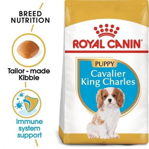 ΤΡΟΦΗ ΓΙΑ KOYTABIA ΡΑΤΣΑΣ cavalier king charlιes puppy 1,5kg