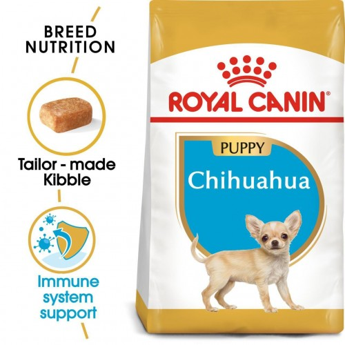 Chihuahua puppy 1,5kg