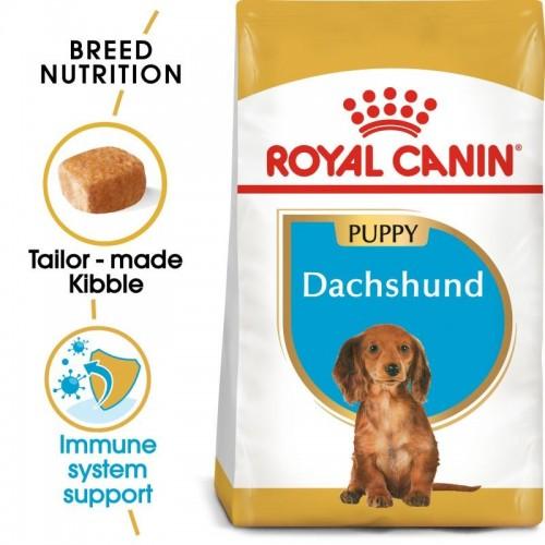 Royal Canin Dog Food Dachshund Puppy
