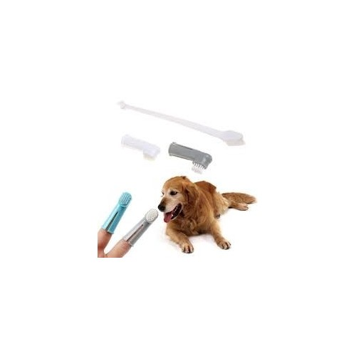 toothbrush for pet