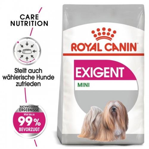CCN Mini Exigent 3kg