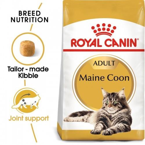 FBN Main Coon 4kg