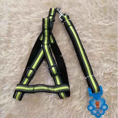 Dog harness M