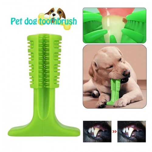 Pet Toothbrush xl