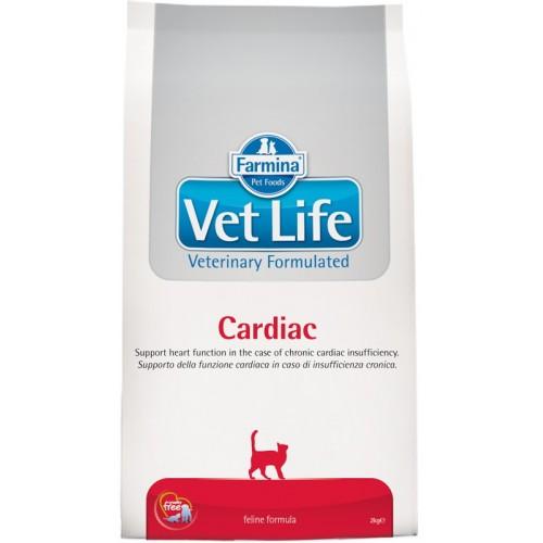 Cardiac feline 10kg