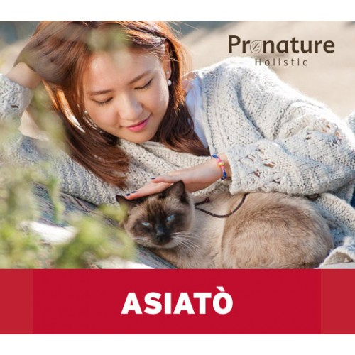 Asiato for adult cats 2kg